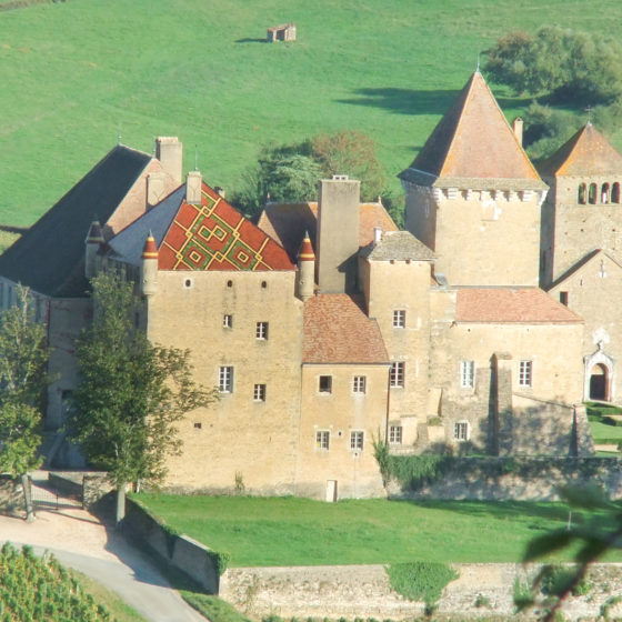 Chateau Pierreclos with its glazed tile roof